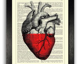 340x270 Anatomy Heart Print Heart Vintage Wall Decor Heart Drawing