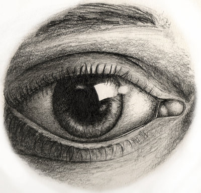 Anatomy of the eye drawing at getdrawings free for personal 400x385 tutorial 400x385 tutorial 528x440 eye anatomy drawing sketch image illustration ccuart Gallery