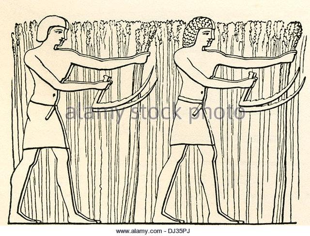 640x487 Ancient Egypt Farmer Stock Photos Amp Ancient Egypt Farmer Stock