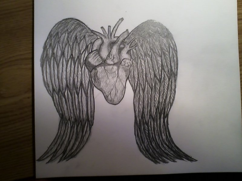 800x600 Heart With Angel Wings Pencil Drawing By Mychalc