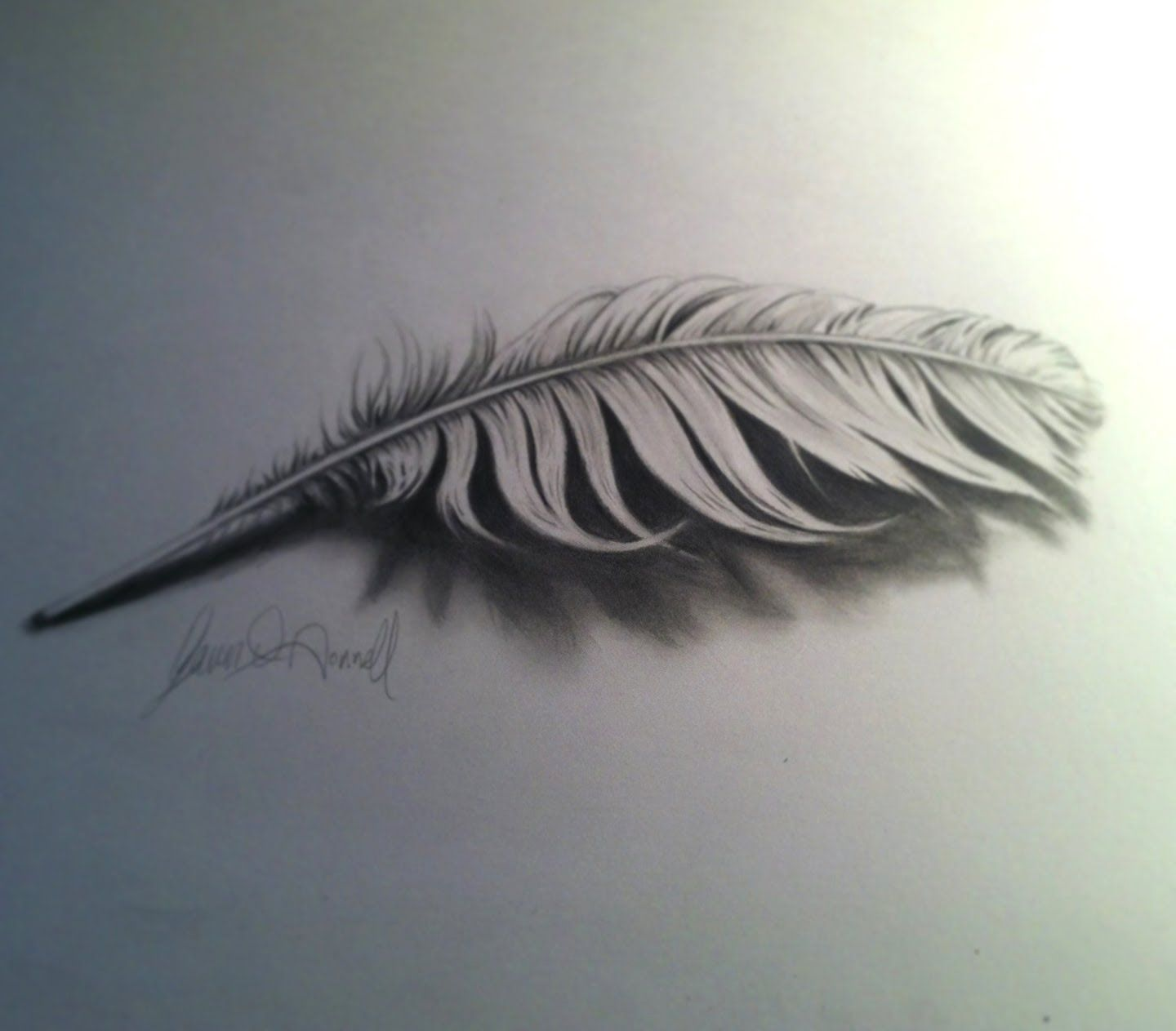 1440x1263 Feather