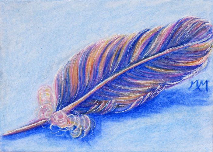 700x500 Original Aceo Art Bird Angel Feather Color Pencil Drawing Colorful