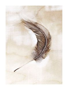 236x314 Completed Floating Feather Drawing Debbie Friedman