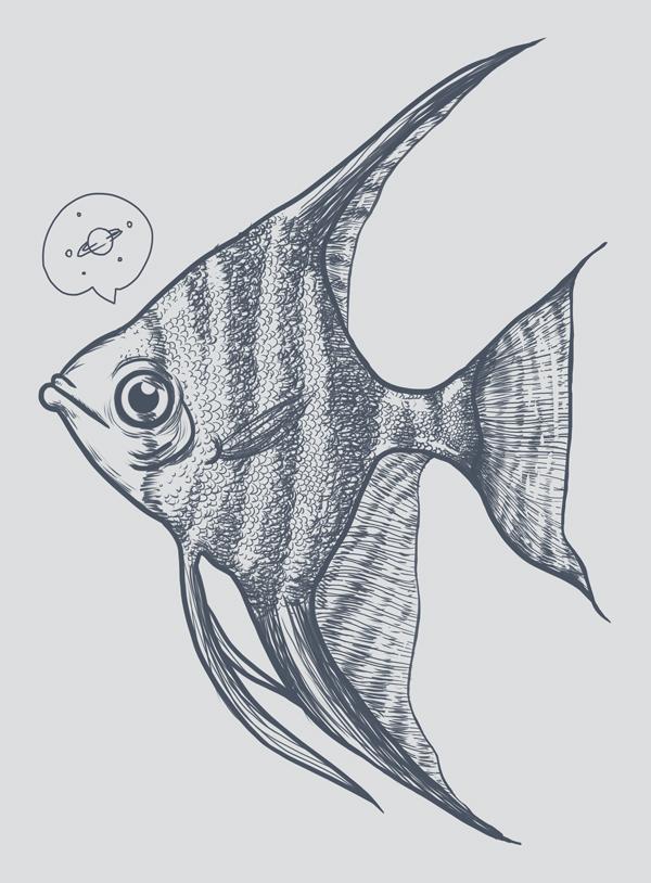 600x814 Angelfish Fish Aquarium Freshwater Pterophyllum Cichlid