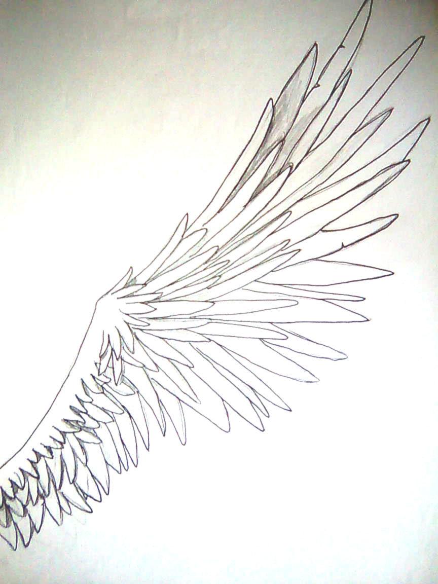 864x1152 Angel Wing By Alxyz92