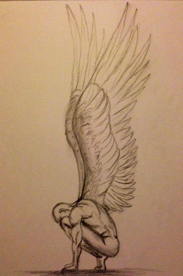 736x1106 Drawing Angels Kalars Hd 3d Best Angel Wings Drawing Ideas