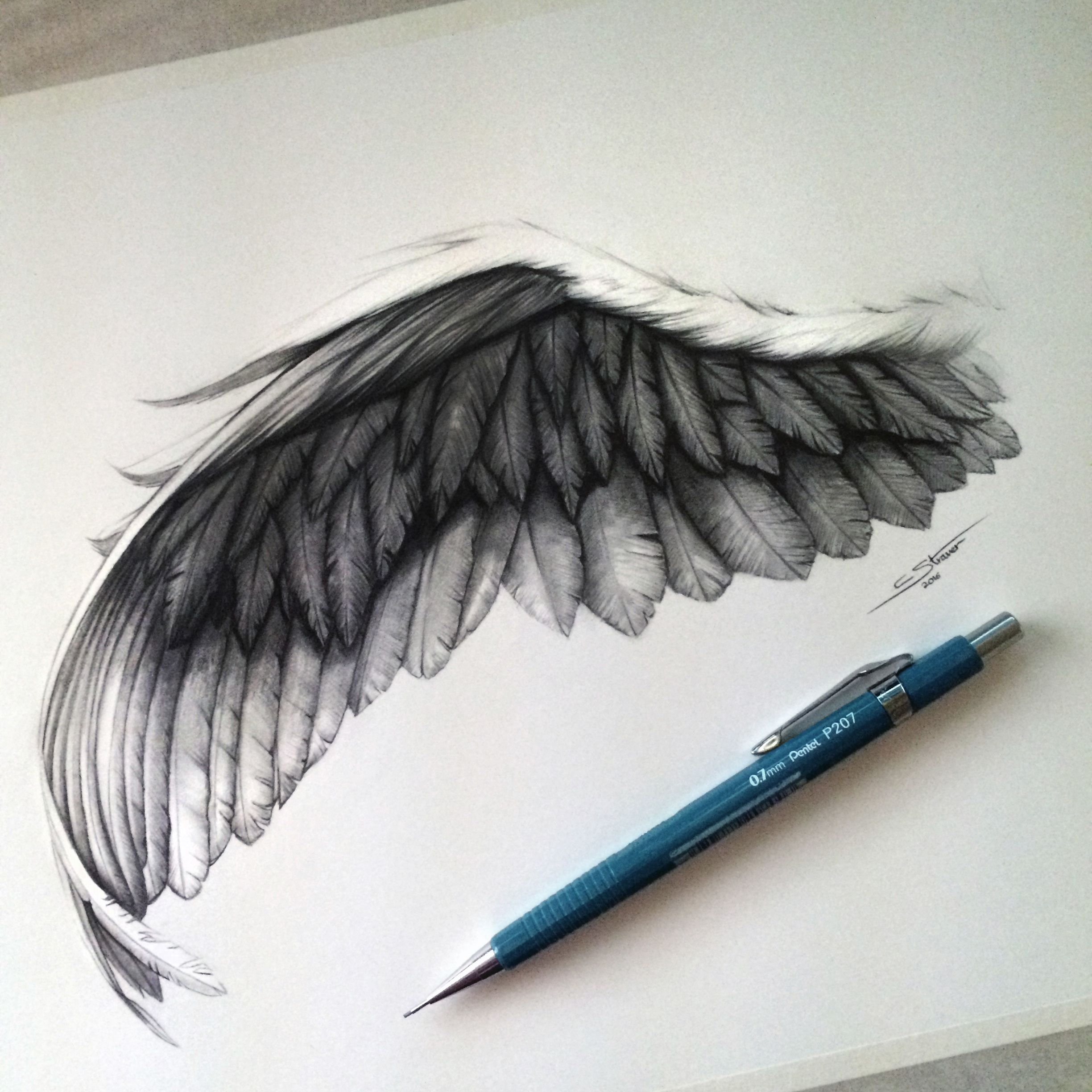 2448x2448 Angel Wing Drawing Bristol, Smooth And Draw