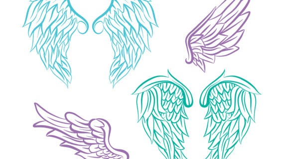 570x320 Realistic Angel Wings Drawing Realistic Angel Wings Illustration