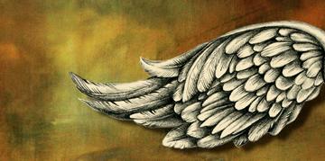 360x179 Angel Wings Saxton Studio Blog