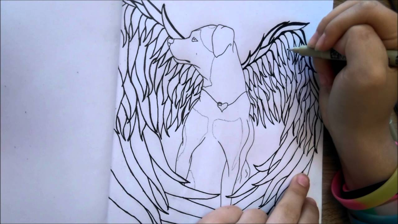 1280x720 Dog With Angel Wings Speed Drawing