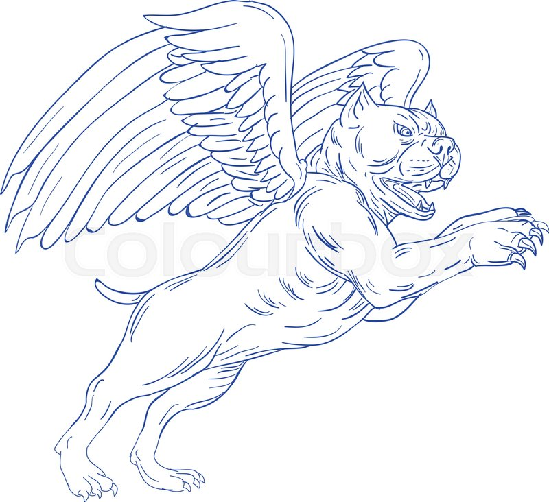 800x732 Drawing Sketch Style Illustration Of An American Bully Dog