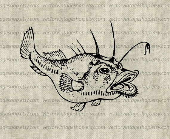 570x464 Angler Fish Clipart Vector Instant Download Anglerfish Clip