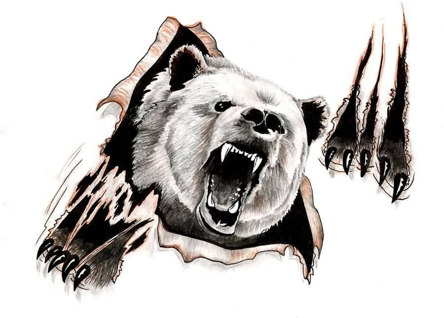 900x644 Angry Bear Ripped Skin Tattoo Design