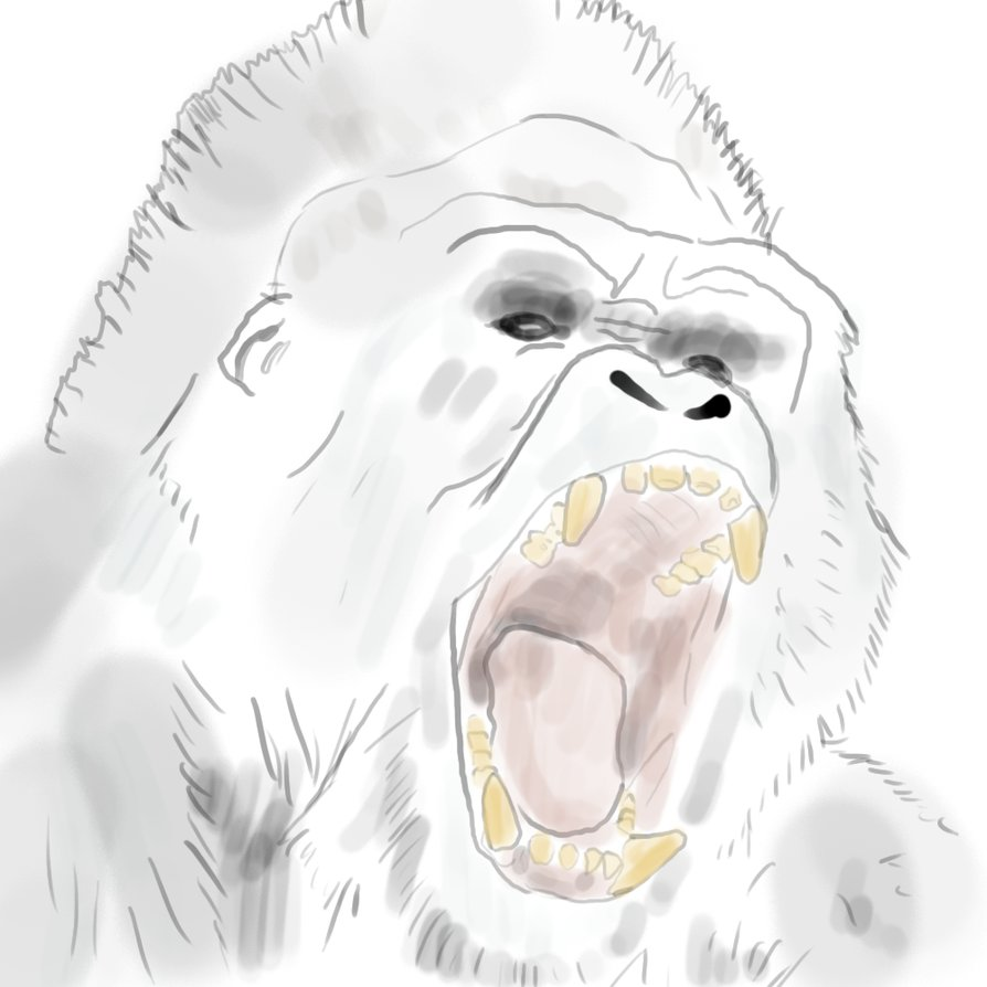 894x894 Angry Ghost Gorilla By Mebegreen