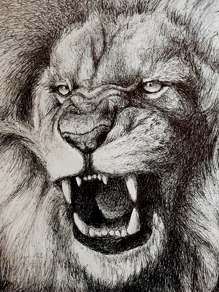 750x1000 Angry Lion (2015) By Kimberlyschultz
