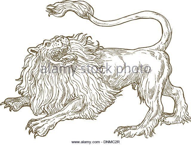 640x487 Angry Lion Drawing Stock Photos Amp Angry Lion Drawing Stock Images
