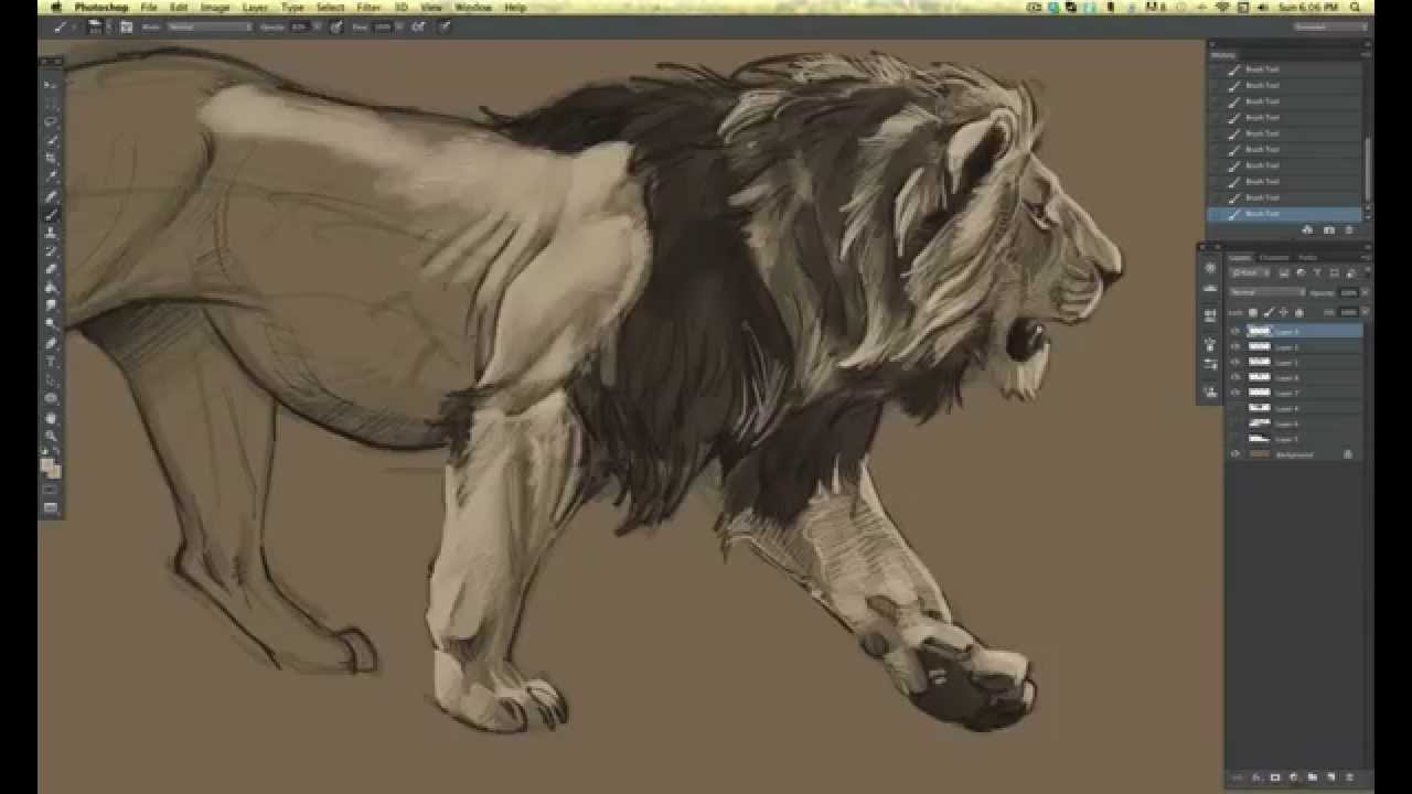1280x720 Time Lapse Lion Drawing In Photoshop Cs6