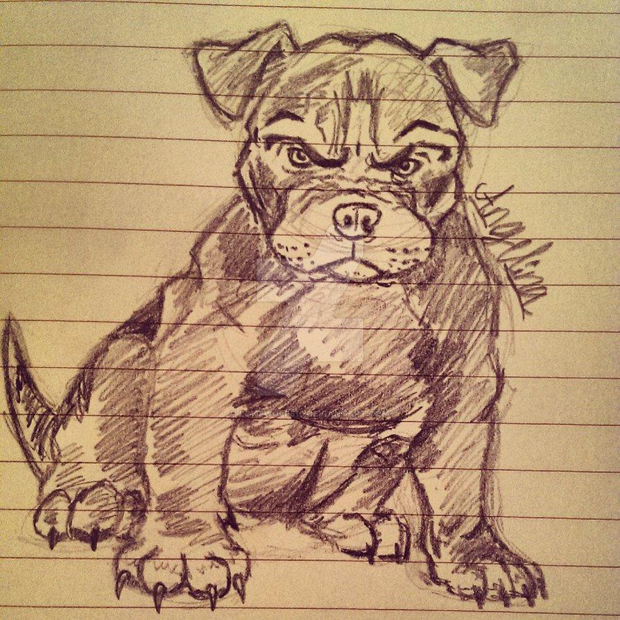 894x894 Angry Pitbull Puppy By Lonewolf510