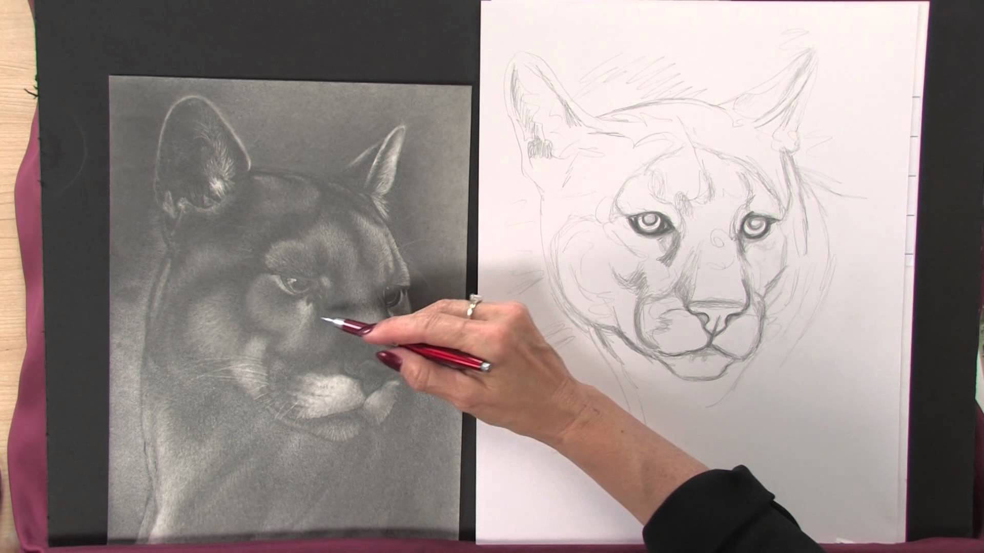 1920x1080 Preview Art Lessons With Lee Hammond Draw Animals In Nature