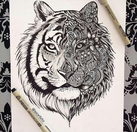 480x465 Animal Art Drawing Painting 2845069.jpg Art