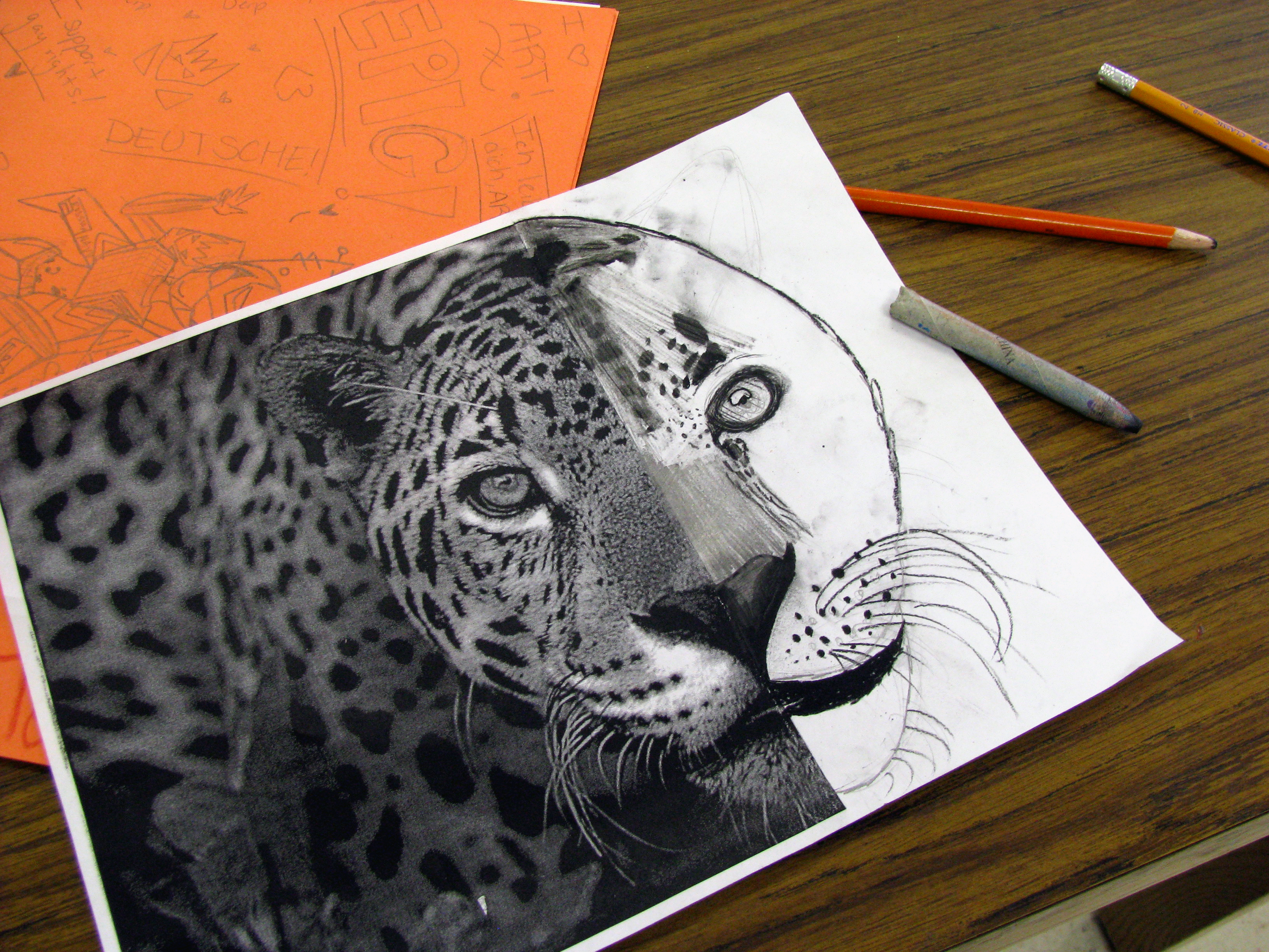3264x2448 Complete The Animal Charcoal Drawing Mrs. Bearden's Art Room