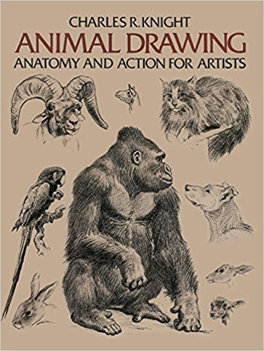 376x499 Animal Drawing Anatomy And Action For Artists Charles R. Knight