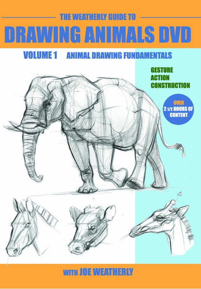 696x1000 the weatherly guide to drawing animals dvd volume one