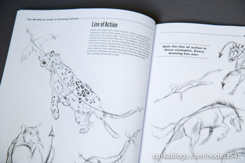500x333 book review the weatherly guide to drawing animals parka blogs