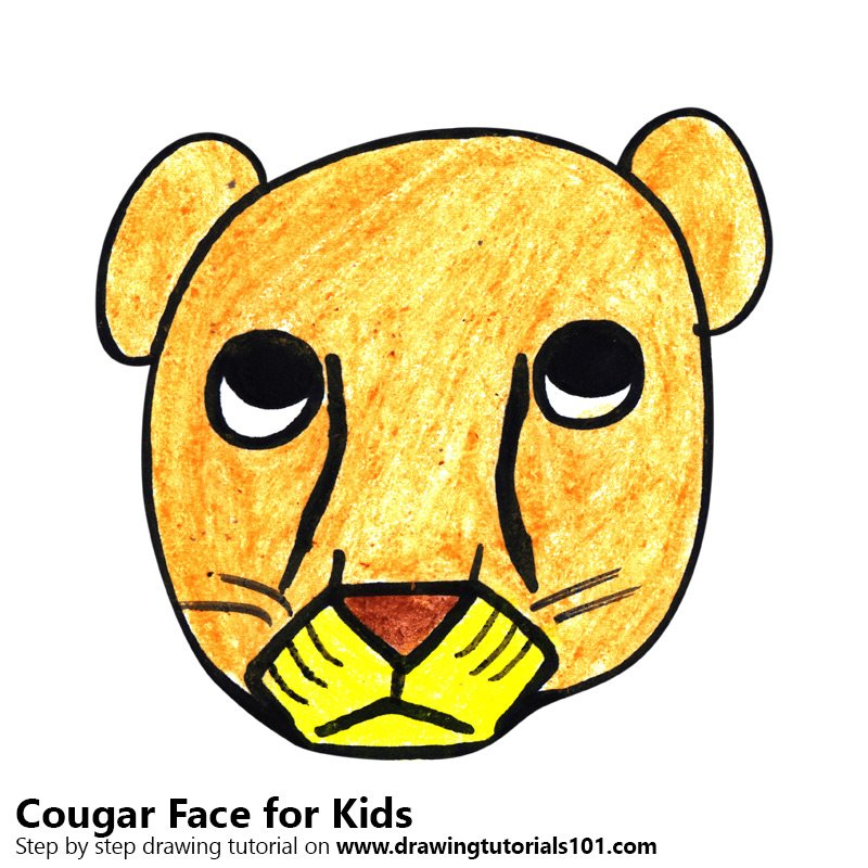 800x800 Learn How To Draw A Cougar Face For Kids (Animal Faces For Kids