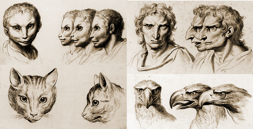 886x452 Physiognomy The Human Face With Animal Qualities
