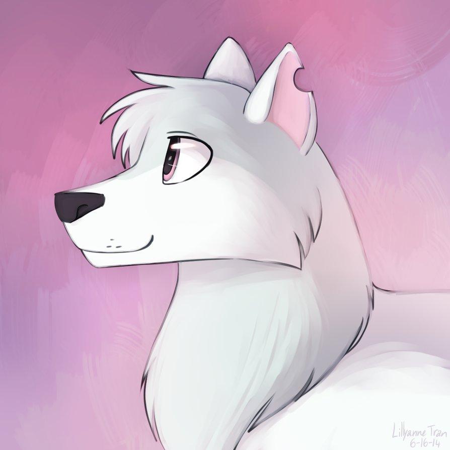 894x894 Animal Jam Artiv Wolf Drawings Animal Jam Artic Wolf By
