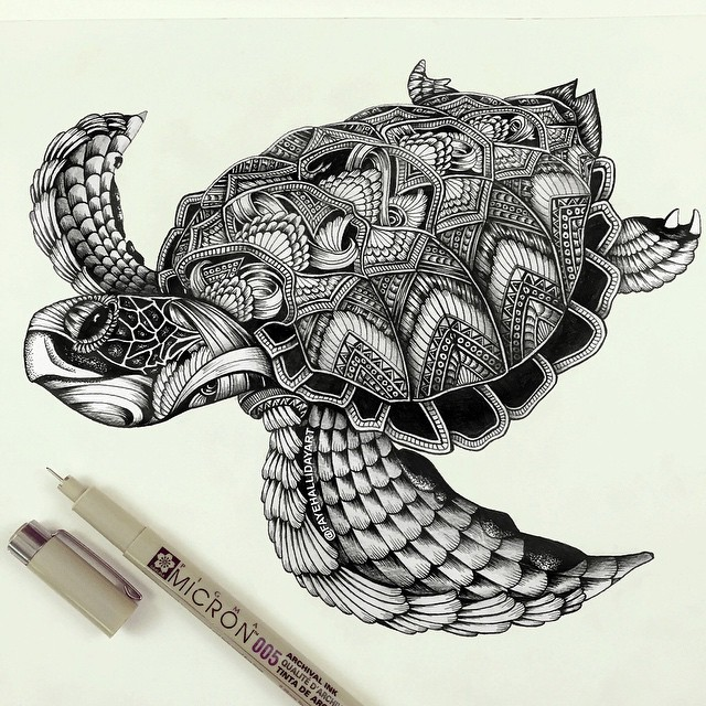 640x640 Majestic Animal Illustrations Hand Drawn With Intricately