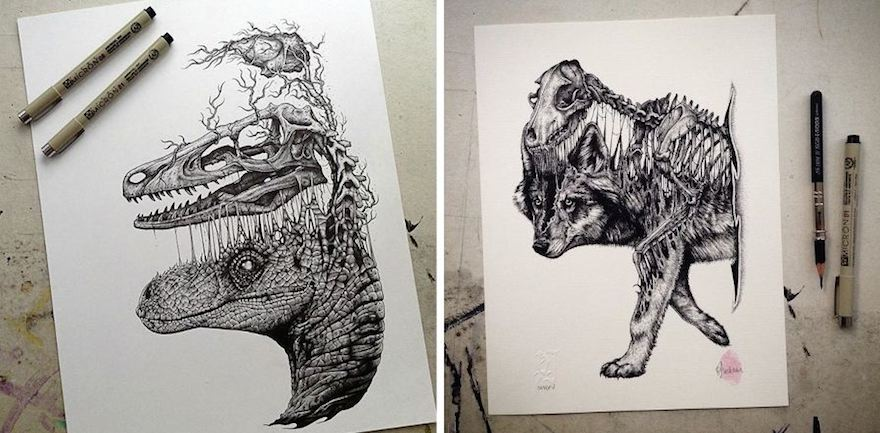880x433 Animals Evolve Out Of Their Skeletons In Dark Drawings By Paul Jackson