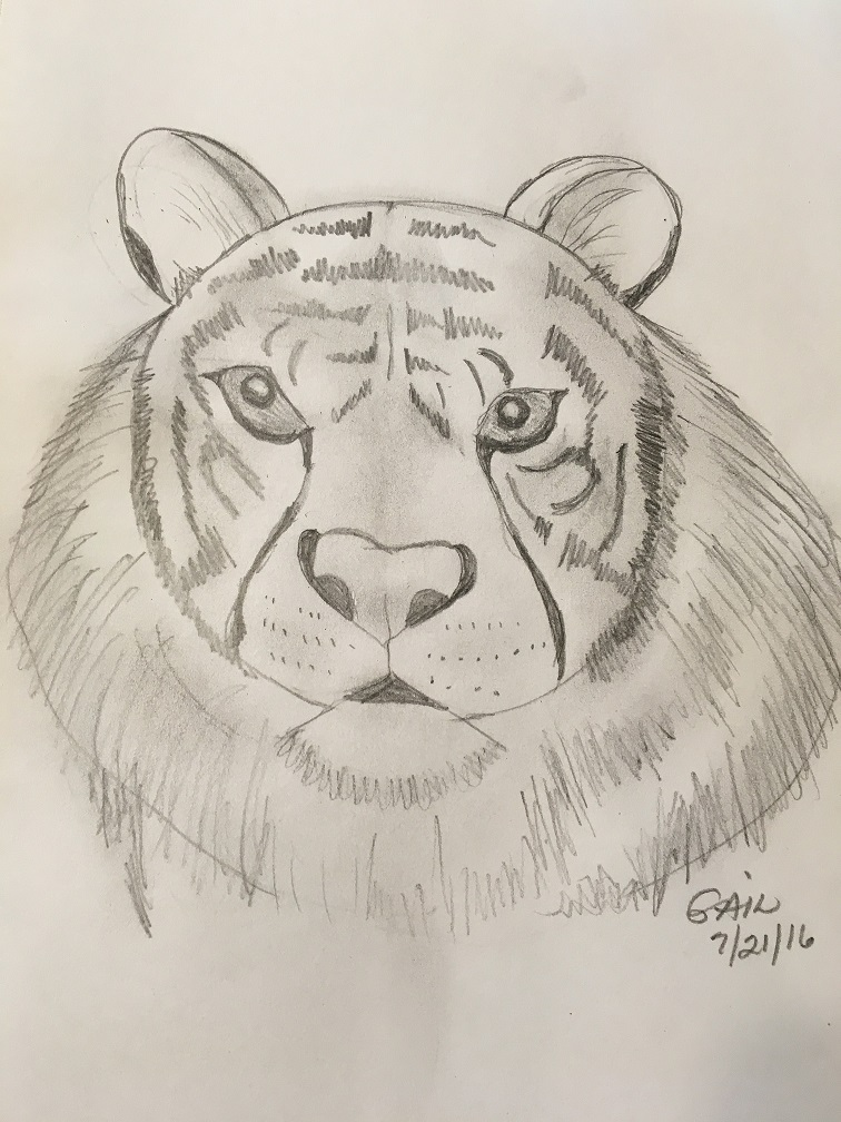 756x1008 Draw 25 Wild Animals (Even If You Don'T Know How To Draw