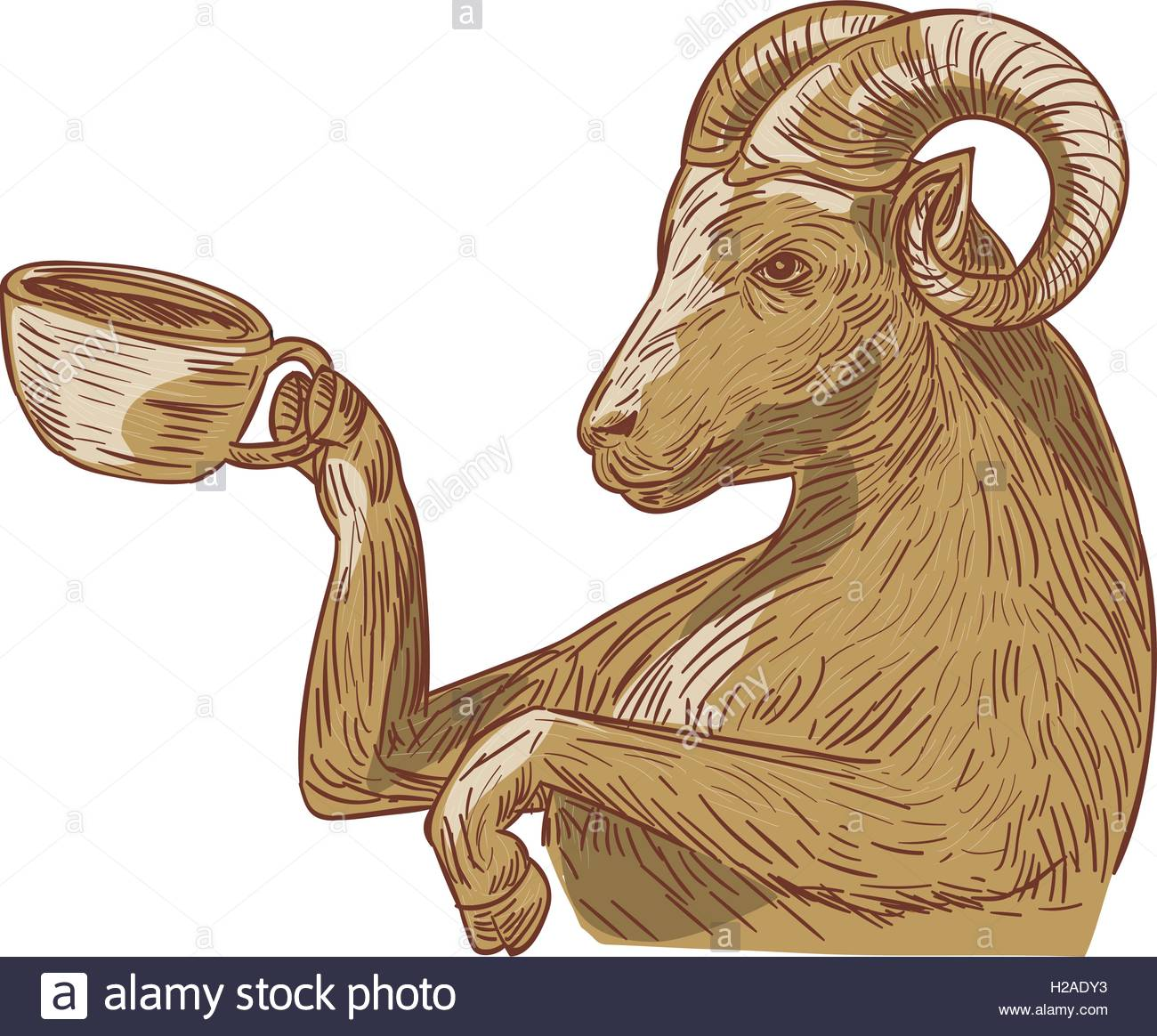 1300x1164 Ram Goat Drinking Coffee Drawing Stock Vector Art Amp Illustration