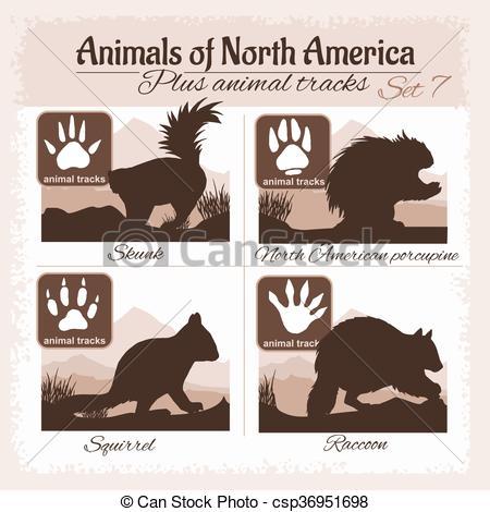 450x470 North America Animals And Animal Tracks, Footprints. Vector Eps