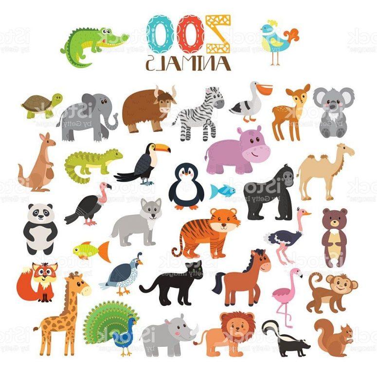 775x775 Top Zoo Animals Cartoon Set Vector Cdr Free Clip Art Designs