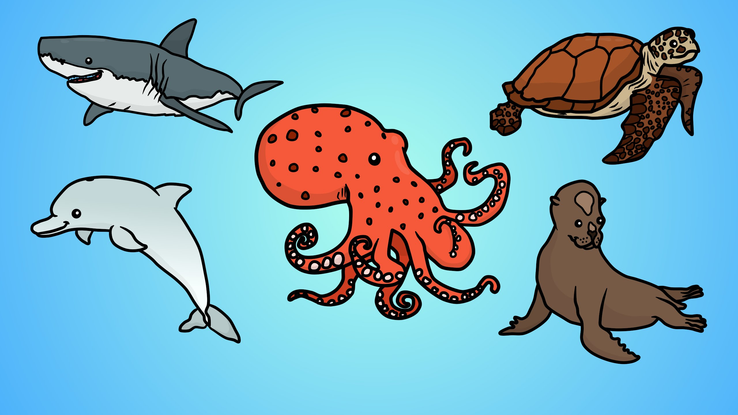 2560x1440 Any Five Sea Animals Drawing Images
