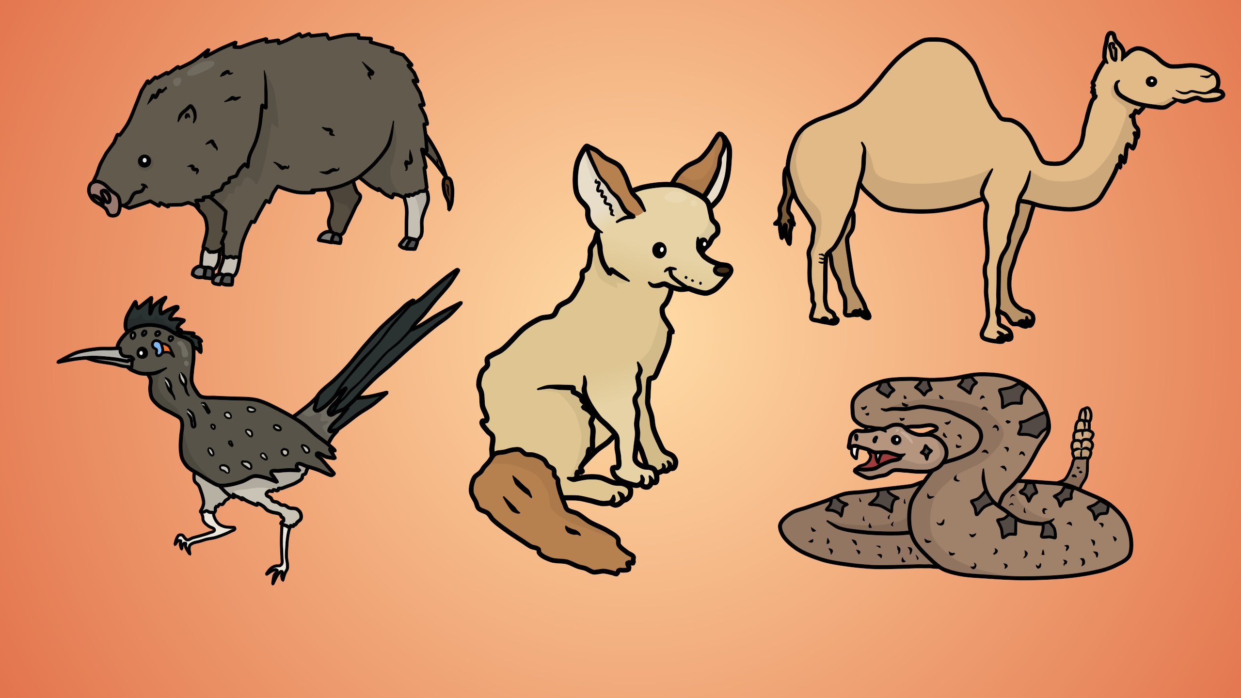 2560x1440 Draw Five How To Draw Desert Animals