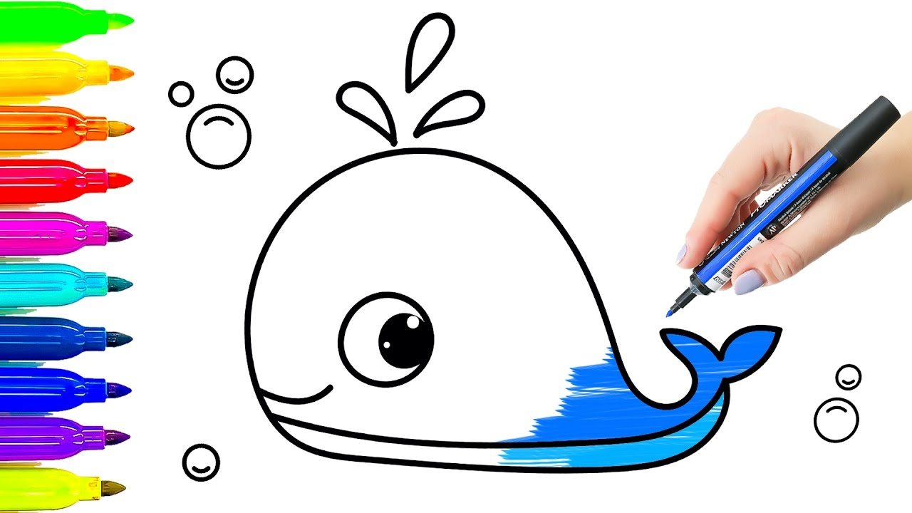 1280x720 Blue Whale Animals Drawing And Coloring For Kids. Learning