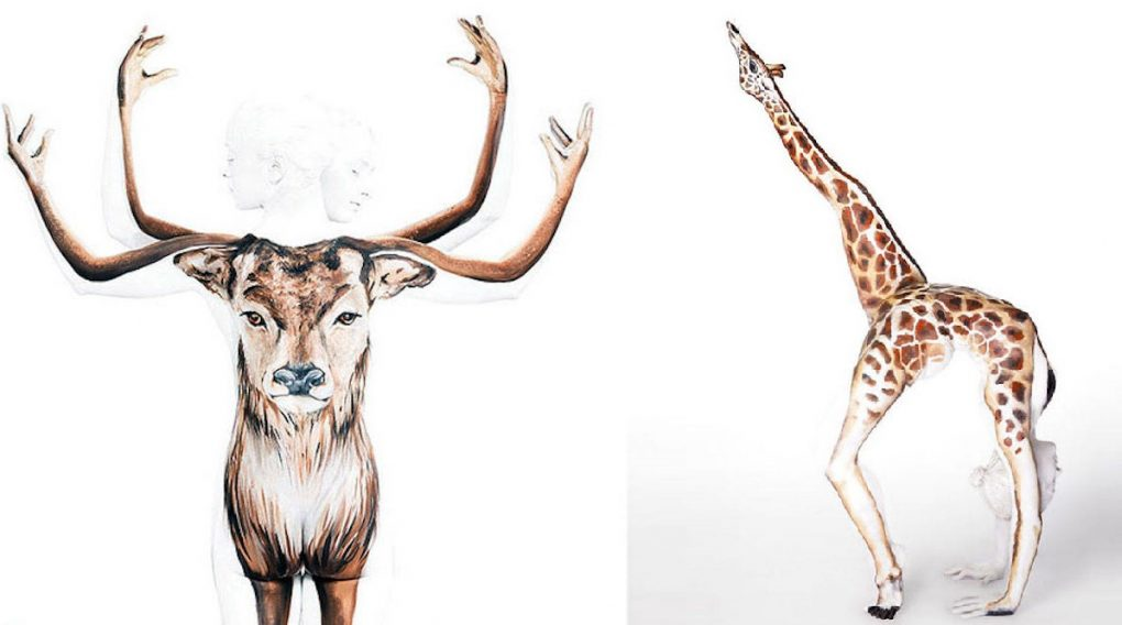 1020x568 Art Pictures Animals Drawing For Colouring Easy Animal Paintings