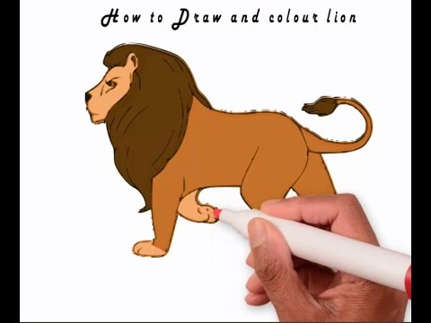 480x360 How To Draw And Colour Lion 2016 Learn To Draw Lion