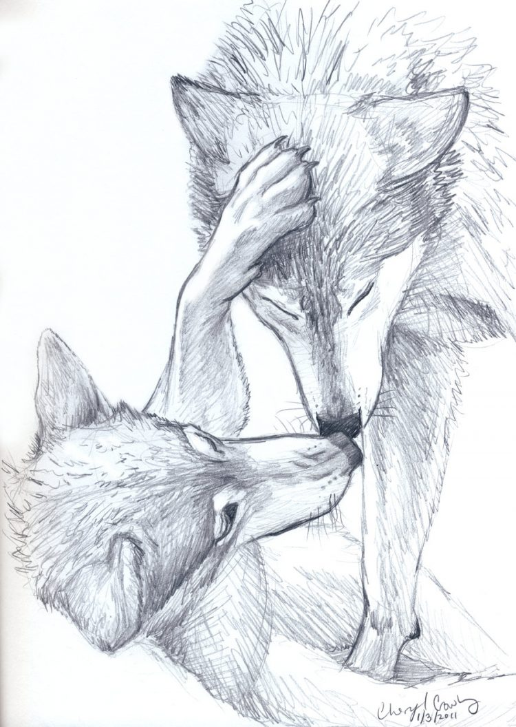 750x1056 Drawing How To Draw Realistic Animals Youtube Also How To Draw