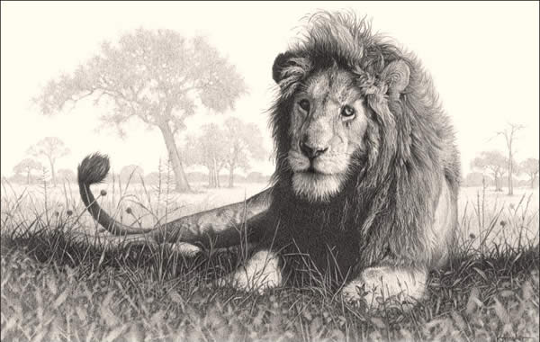 600x380 40 Beautiful And Realistic Animal Sketches For Your Inspiration