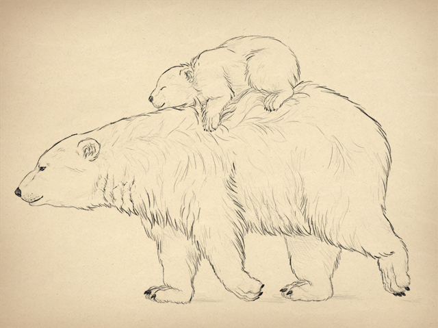 Simple Line Drawings Of Animals : Animals realistic drawing at getdrawings free for personal