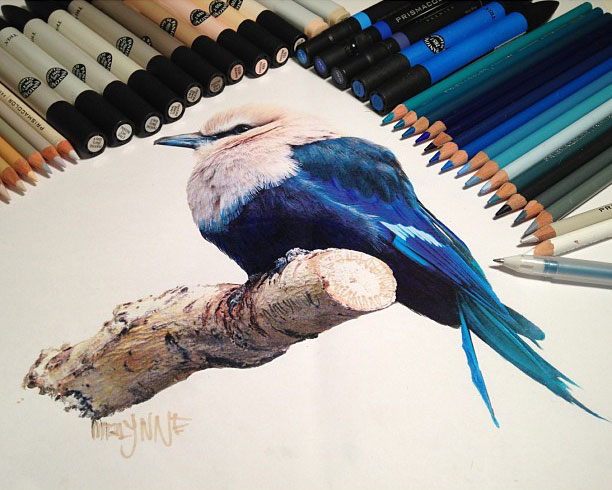 612x490 Realistic Animals Drawings Next To The Tools Used To Create Them