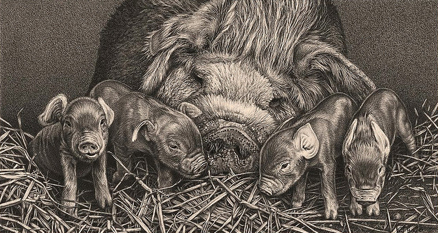 626x333 Realistic Drawings Of Animals Realistic Pig Drawing Detailed