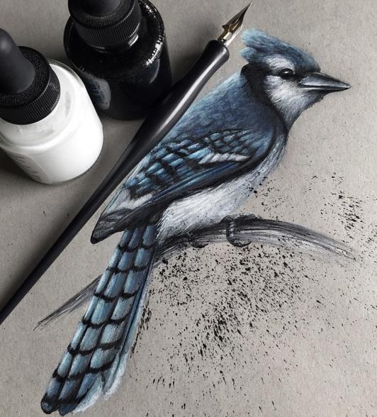 532x588 Stunning Realistic Pencil Drawing Of Animals By Jonathan Martinez