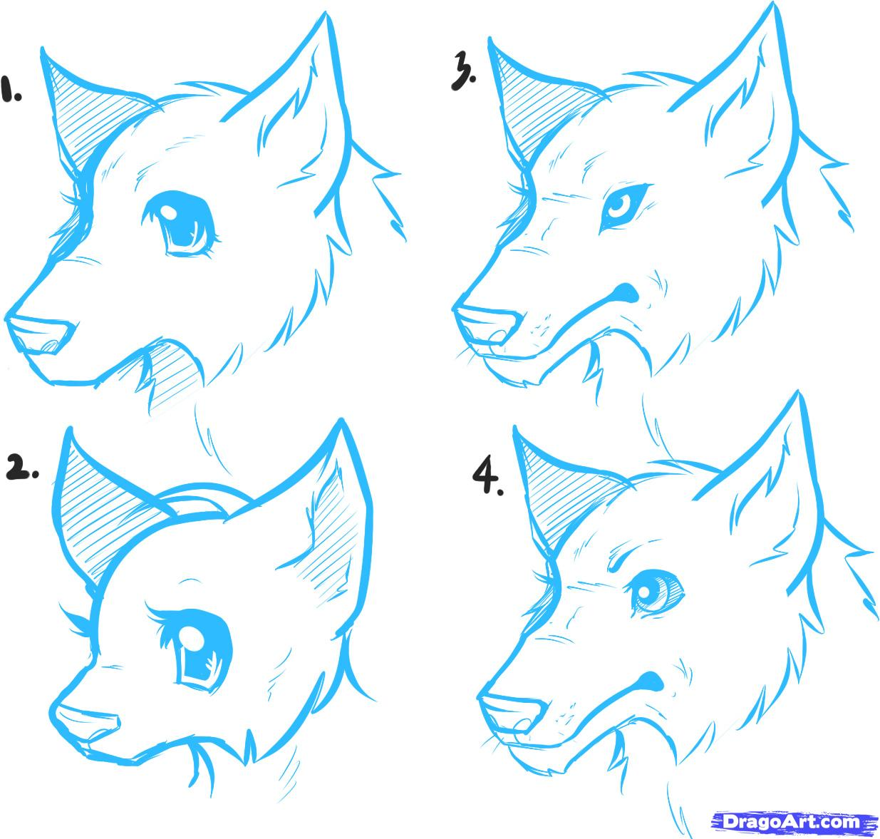 1235x1177 how to draw anime wolves, anime wolves step 3 Art lines