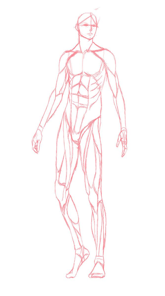 Anime Body Templates For Drawing At Getdrawings Free For